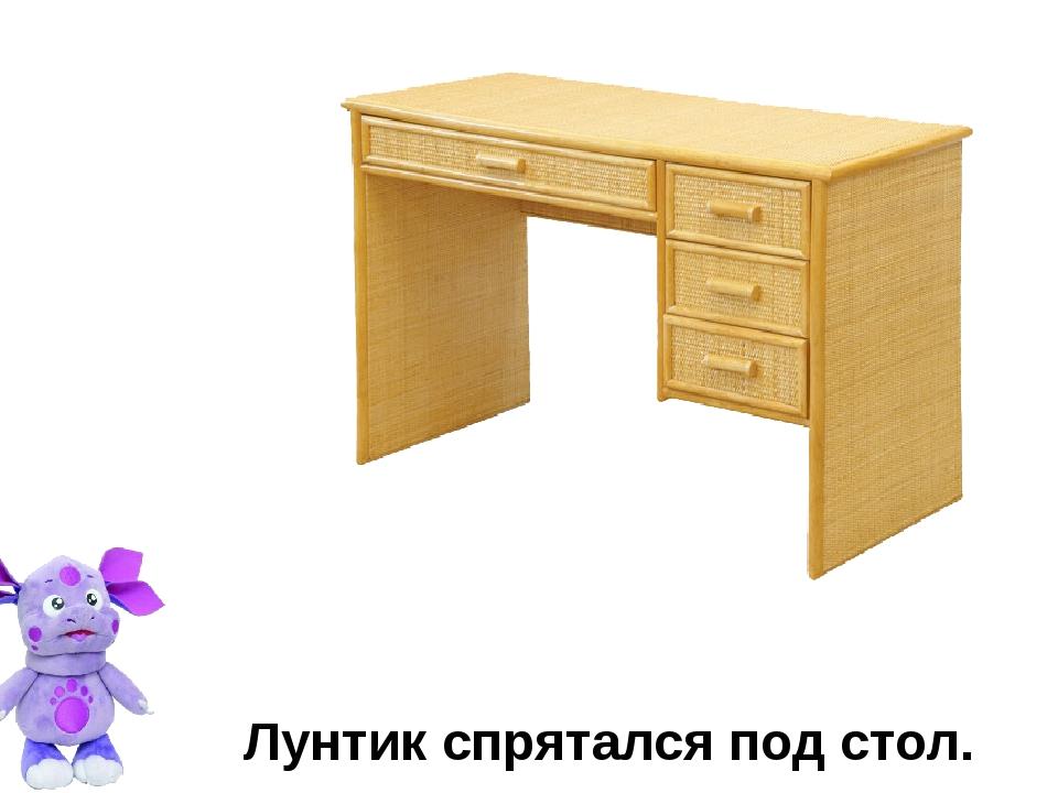 Лунтик спрятался под стол.