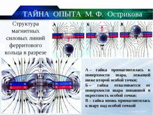 Структура магнитных силовых линий ферритового кольца в разрезе А– гайка прим