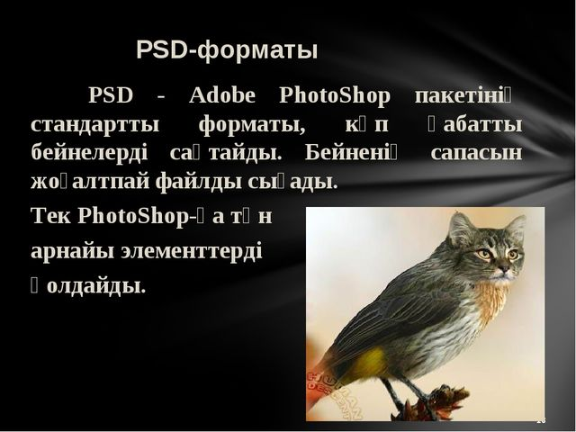 * PSD-форматы PSD - Adobe PhotoShop пакетінің стандартты форматы, көп қабатт...