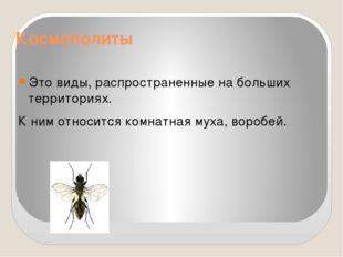 Космополиты Это виды, распространенные на больших территориях. К ним относитс
