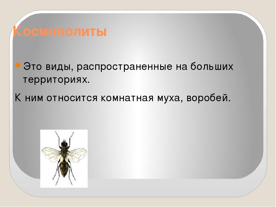 Космополиты Это виды, распространенные на больших территориях. К ним относитс...