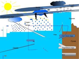 Испарение Конденсация пара Осадки – дождь Осадки – снег Ветер Круговорот вод