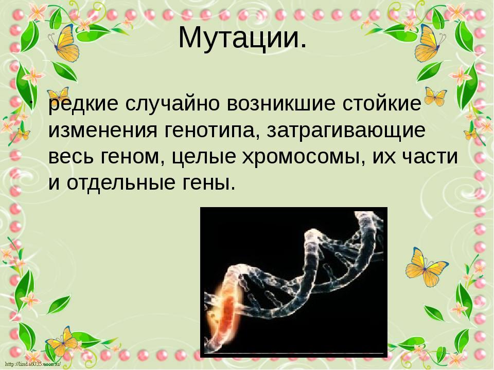 Мутации. редкие случайно возникшие стойкие изменения генотипа, затрагивающие...