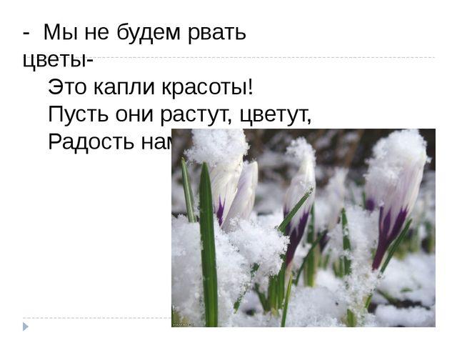 - Мы не будем рвать цветы-   Это капли красоты!   Пусть они растут, цвет...