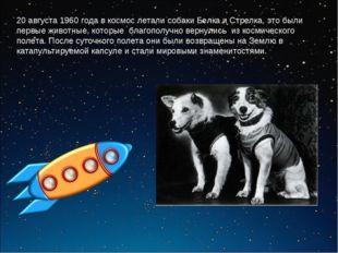20 августа 1960 года в космос летали собаки Белка и Стрелка, это были первые