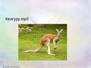 Кенгуру.mp3 © Дегтярёва Юлия Владимировна
