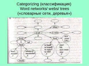 Categorizing (классификация) Word networks/ webs/ trees («словарные сети, дер