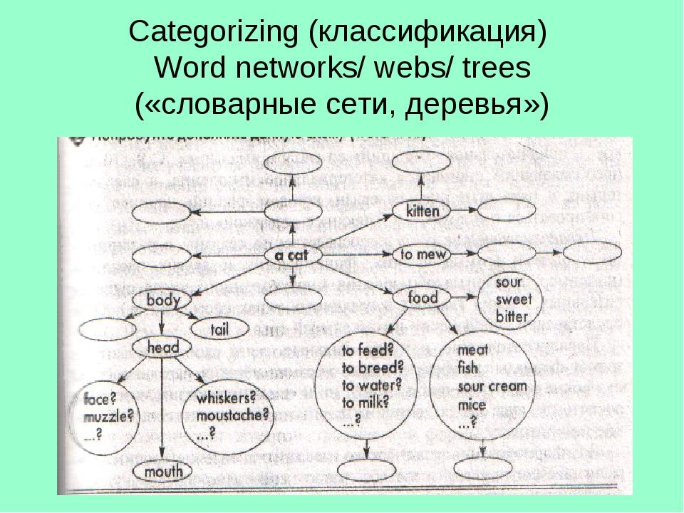Categorizing (классификация) Word networks/ webs/ trees («словарные сети, дер...