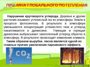 Нарушение круговорота углерода. Деревья и другие растения изымают углекислый