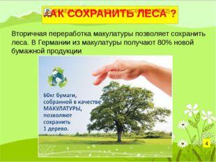Вторичная переработка макулатуры позволяет сохранить леса. В Германии из маку