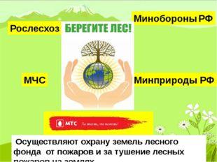 Рослесхоз Минобороны РФ Минприроды РФ МЧС Осуществляют охрану земель лесного