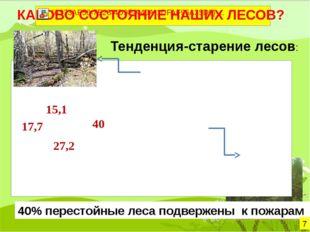 Тенденция-старение лесов: 40% перестойные леса подвержены к пожарам 7