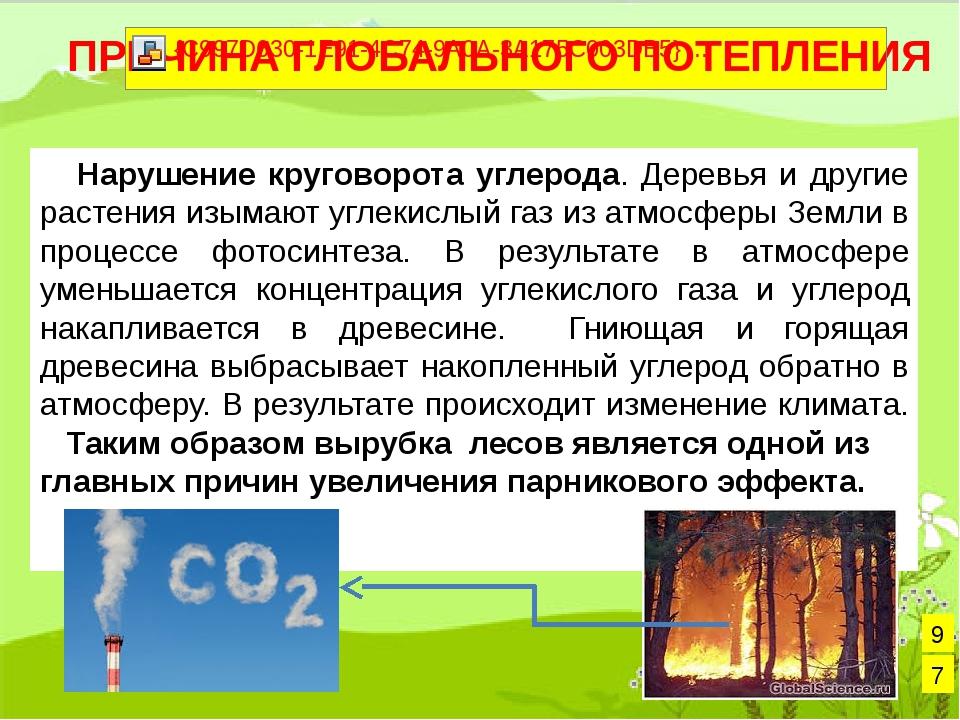 Нарушение круговорота углерода. Деревья и другие растения изымают углекислый...