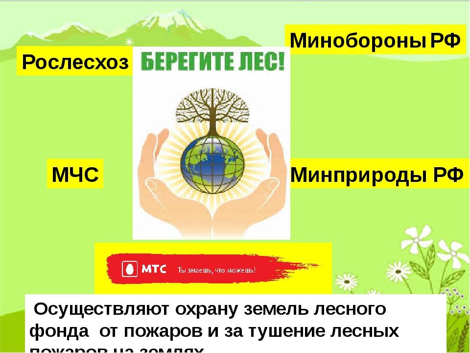 Рослесхоз Минобороны РФ Минприроды РФ МЧС Осуществляют охрану земель лесного...
