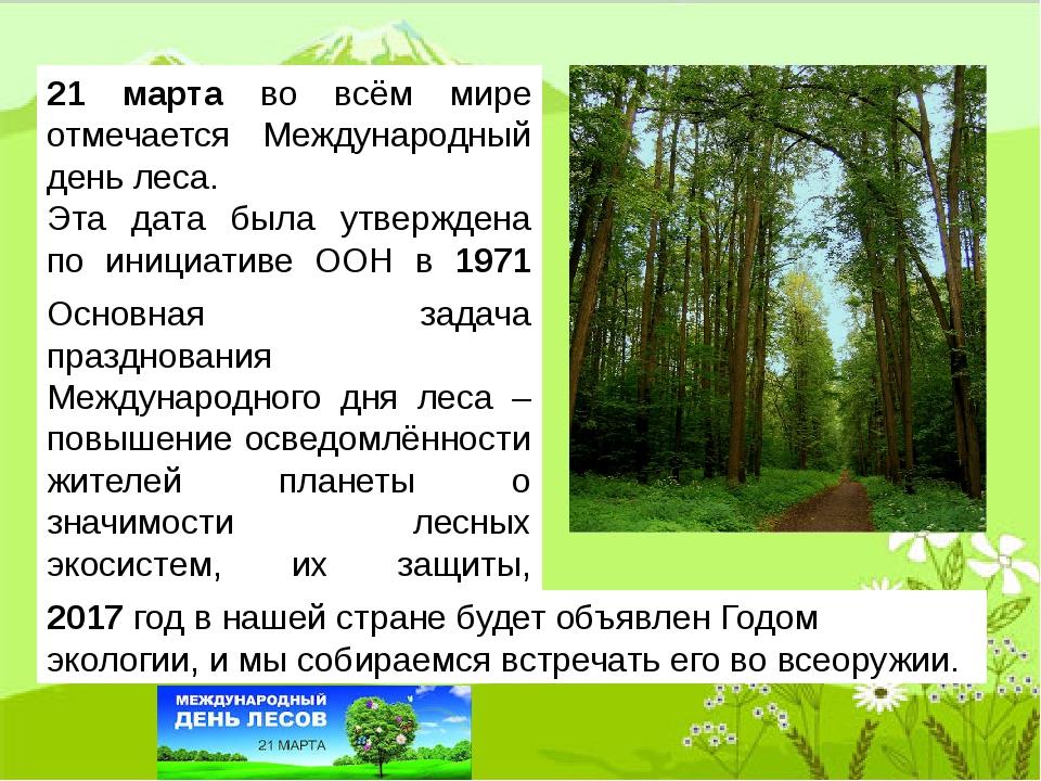 21 марта во всём мире отмечается Международный день леса. Эта дата была утвер...