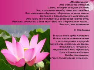 «Моя Калмыкия - Это дом моего детства, Степь, которая говорит со мною. Это яз