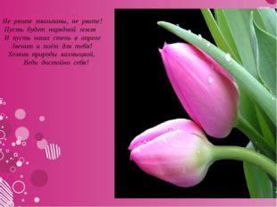 Не рвите тюльпаны, не рвите! Пусть будет нарядной земля И пусть на