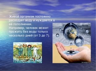 Живой организм постоянно расходует воду и нуждается в её пополнении. Например