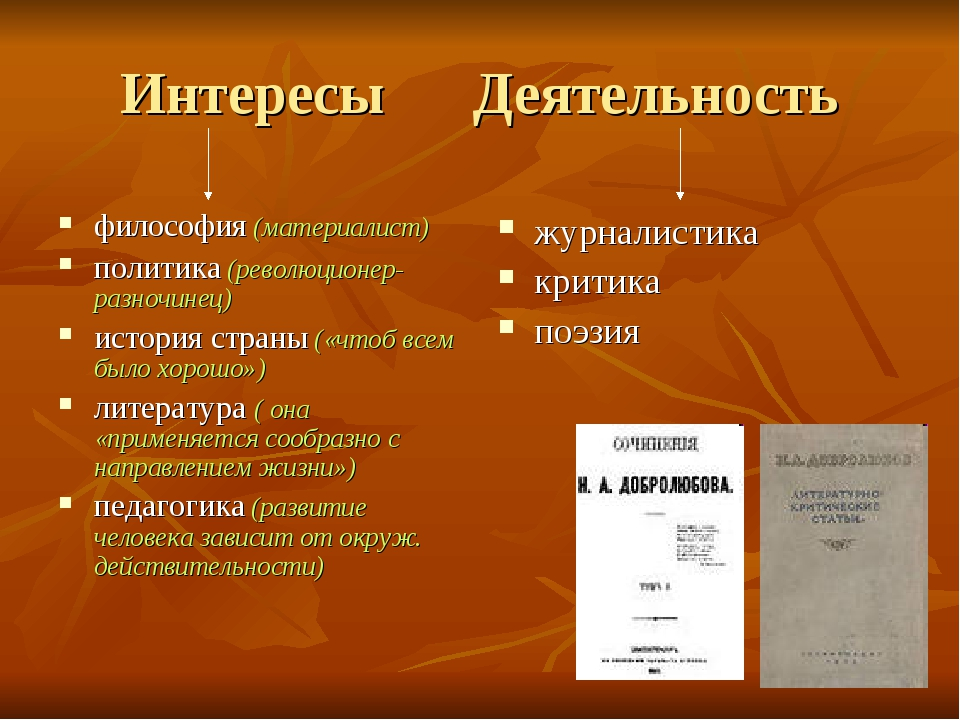 Интересы Деятельность философия (материалист) политика (революционер-разночин...