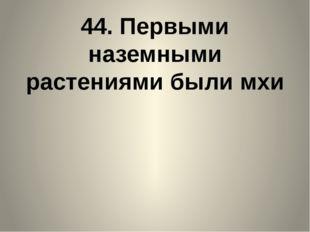 44. Первыми наземными растениями были мхи