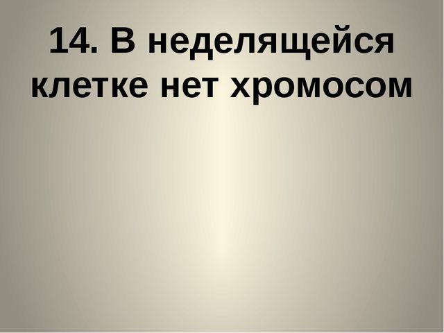 14. В неделящейся клетке нет хромосом