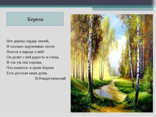 Береза Нет дерева сердцу милей, И сколько задумчивых песен Поется в народе о