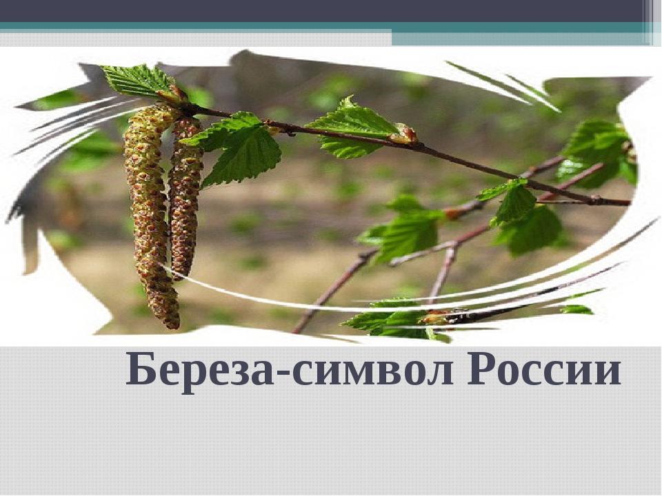 Береза-символ России