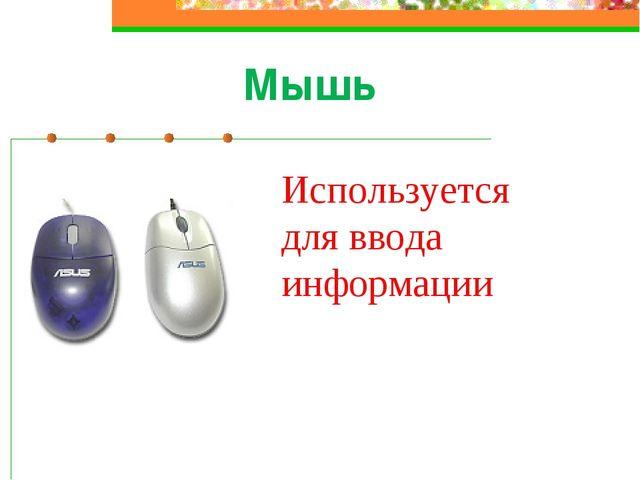 Мышь Используется для ввода информации