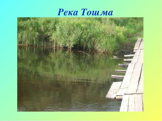 Река Тошма