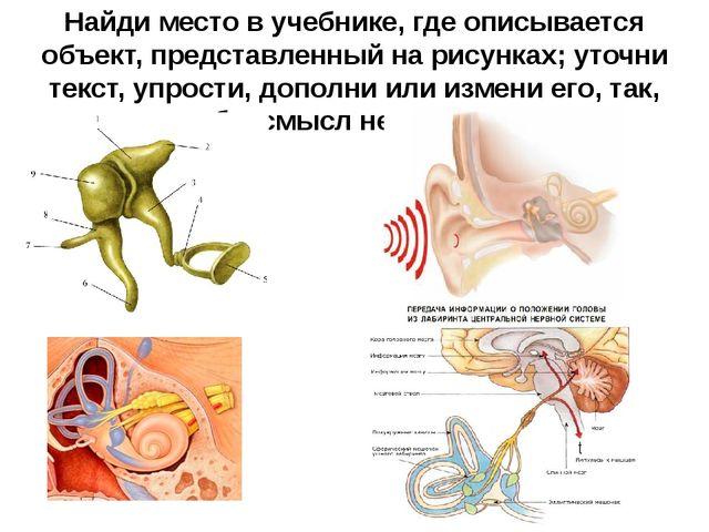 Найди место в учебнике, где описывается объект, представленный на рисунках; у...
