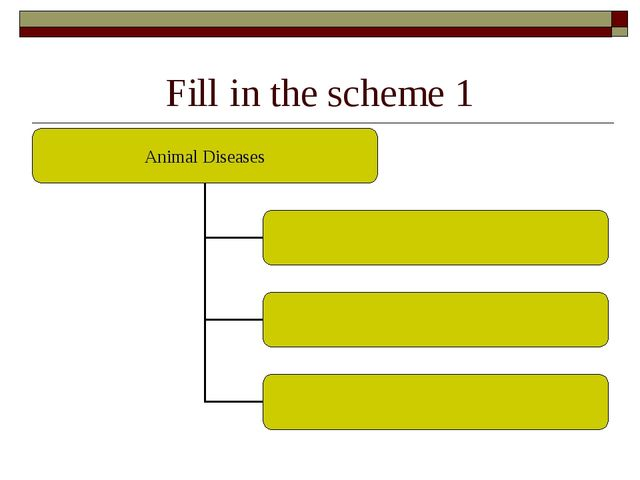 Fill in the scheme 1