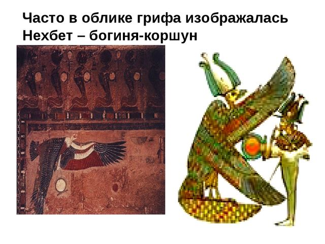 Часто в облике грифа изображалась Нехбет – богиня-коршун