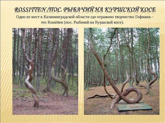 Одно из мест в Калининградской области где отражено творчество Гофмана – это...