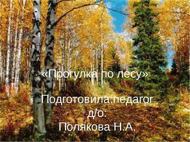 «Прогулка по лесу» Подготовила:педагог д/о: Полякова Н.А.
