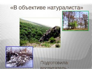 «В объективе натуралиста» Подготовила воспитатель : Ишевская Н.Ю. User: