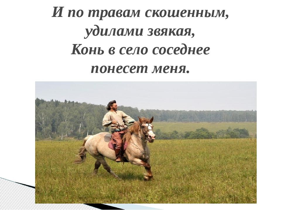 И по травам скошенным, удилами звякая, Конь в село соседнее понесет меня.