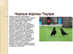 Черные вороны Тауэра Черные вороны, обитающие в Лондонском Тауэре не только