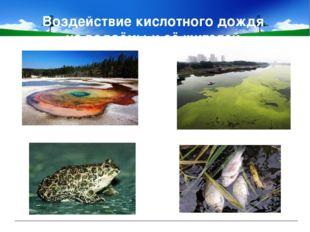 Воздействие кислотного дождя на водоёмы и её жителей.