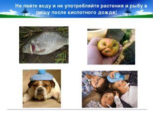 Не пейте воду и не употребляйте растения и рыбу в пищу после кислотного дождя!