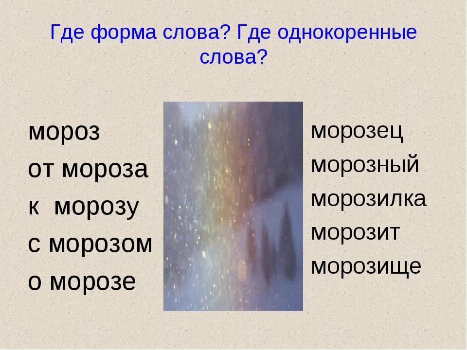 Где форма слова? Где однокоренные слова? мороз от мороза к морозу с морозом о...