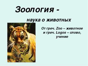 Зоология - наука о животных От греч. Zoo – животное и греч. Logos – слово, уч