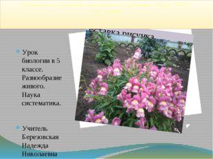 Муниципальное бюджетное образовательное учреждение «Школа №107» г. о. Самара