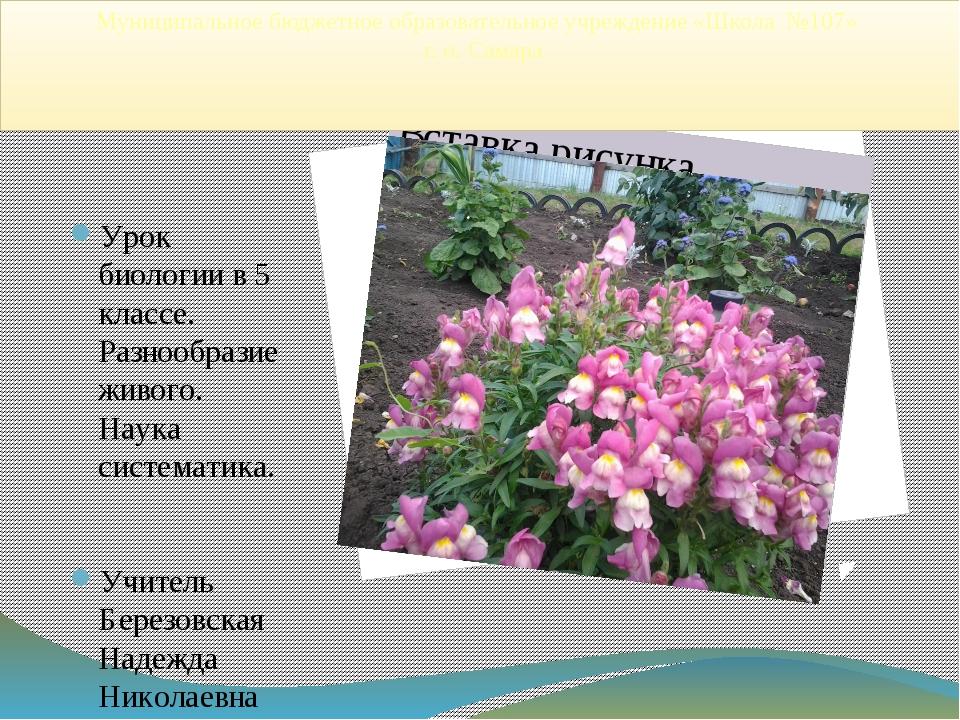 Муниципальное бюджетное образовательное учреждение «Школа №107» г. о. Самара...