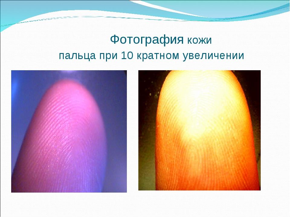 Фотография кожи пальца при 10 кратном увеличении