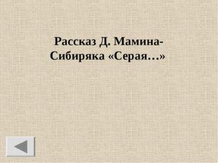 Рассказ Д. Мамина-Сибиряка «Серая…»