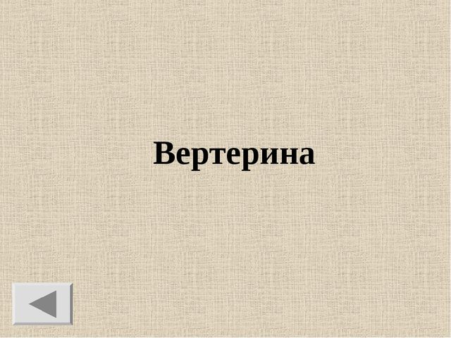Вертерина