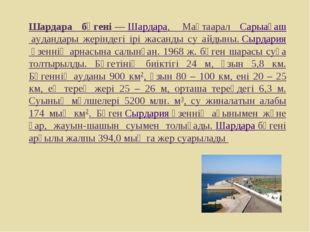 Шардара бөгені—Шардара, Мақтаарал Сарыағаш аудандары жеріндегі ірі жасанд