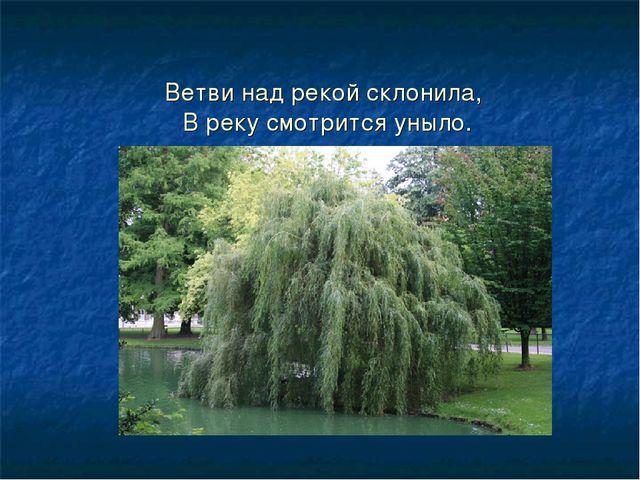 Ветви над рекой склонила, В реку смотрится уныло.