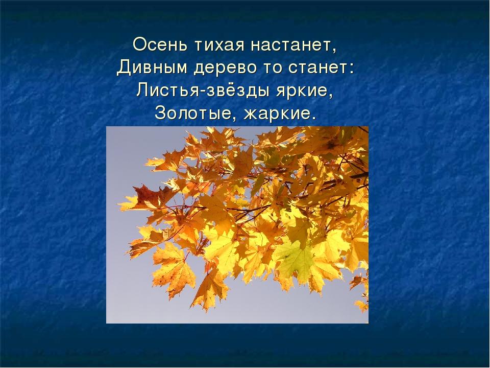Осень тихая настанет, Дивным дерево то станет: Листья-звёзды яркие, Золотые,...