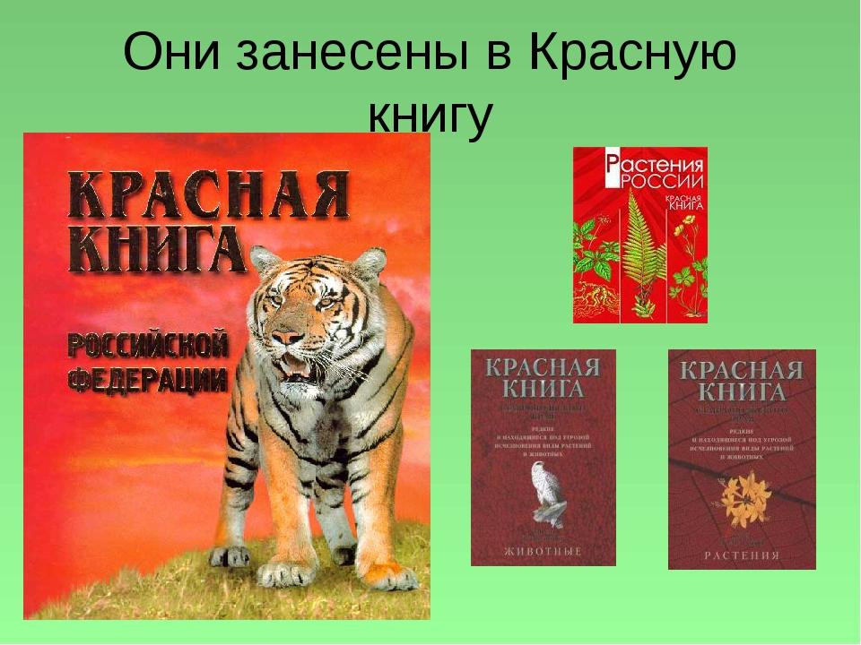 Они занесены в Красную книгу